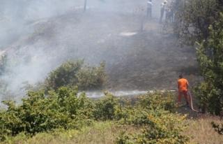 Düzce'de fındık bahçesi yandı