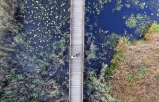 Efteni Kuş Cenneti drone ile görüntülendi