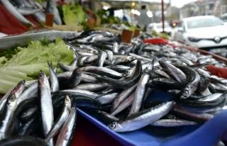 Balıkçılar, Hamsinin Ucuzlaması İçin Kar Yağmasını...