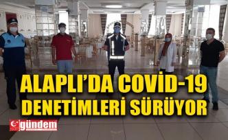 ALAPLI'DA COVİD-19 DENETİMLERİ SÜRÜYOR