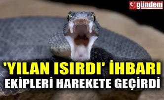'YILAN ISIRDI' İHBARI EKİPLERİ HAREKETE GEÇİRDİ
