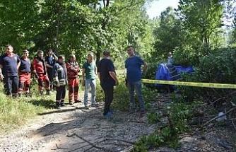 Üzerine ağaç devrilen çocuk öldü