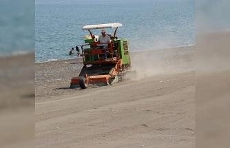 Akevler plajı kumu temizlendi!..