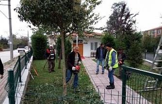 Park ve bahçelerde budama yapılıyor