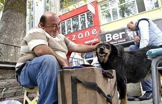 Ayakkabı boyasından kazandığını sokak köpeğiyle paylaşıyor..