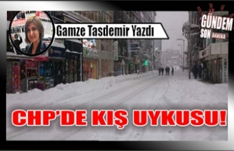 CHP'DE KIŞ UYKUSU!