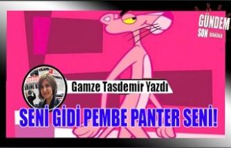 SENİ GİDİ PEMBE PANTER SENİ!