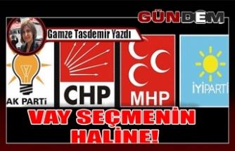 VAY SEÇMENİN HALİNE!