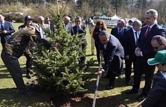 Hükümlülerle birlikte ağaç diktiler