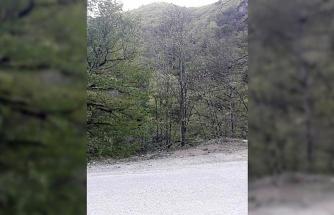 Kanyonda yürüyüşe çıkan çift kayboldu