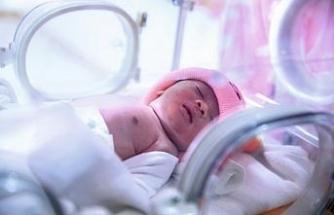 Düzce'de 2018 yılında 5 bin 175 bebek dünyaya geldi