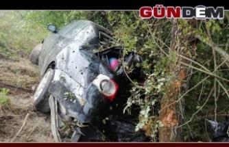 Otomobil Ağaca Çarpti. 3'ü çocuk 6 yaralı