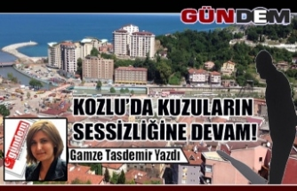 KOZLU'DA KUZULARIN SESSİZLİĞİNE DEVAM!