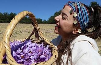 Mutluluk iksiri: Safran