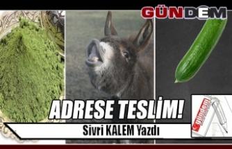ADRESE TESLİM!