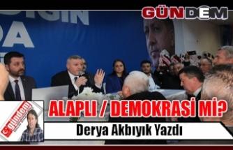 ALAPLI / DEMOKRASİ Mİ?
