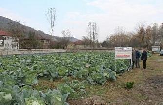 Düzce Üniversitesi'nde tarım paneli düzenlenecek
