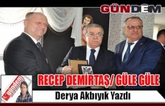 RECEP DEMİRTAŞ/ GÜLE GÜLE