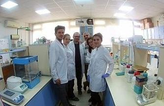 Korana virüs tanısı için yerli enzim üretimi başarılı oldu