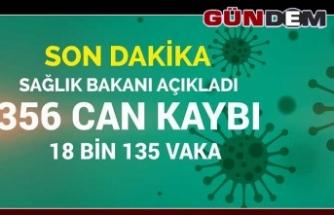 Türkiye'de 356 can aldı, vaka sayısı 18 bini aştı