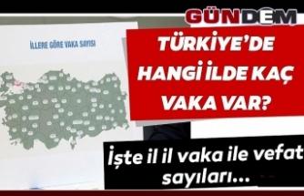 Türkiye'de illere göre vaka sayıları ve can kaybı