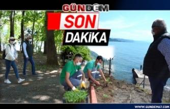 PLAJ YENİ SEZONA HAZIRLANIYOR...