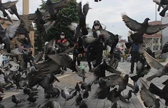 Sokağa çıkma yasağında aç kalan güvercinleri polisler besledi