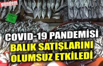 COVID-19 PANDEMİSİ BALIK SATIŞLARINI OLUMSUZ ETKİLEDİ