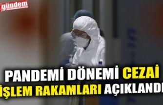 PANDEMİ DÖNEMİ CEZAİ İŞLEM RAKAMLARI AÇIKLANDI