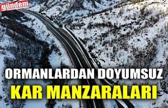 ORMANLARDAN DOYUMSUZ KAR MANZARALARI