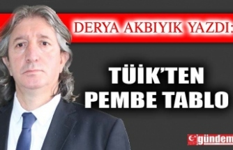 TÜİK'ten Pembe Tablo
