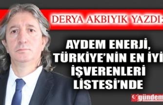 Aydem Enerji, Türkiye'nin En İyi İşverenleri Listesi'nde