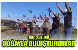 800 SÜLÜNÜ  DOĞAYLA BULUŞTURDULAR