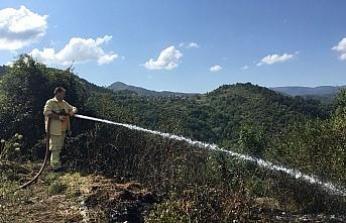 Yenice'de bahçe yangını
