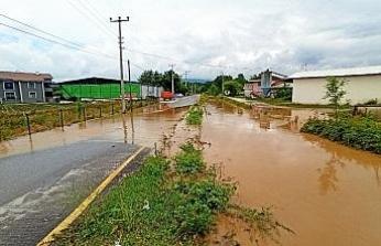 Kanallardan taşan sular bahçeleri, tarlaları bastı
