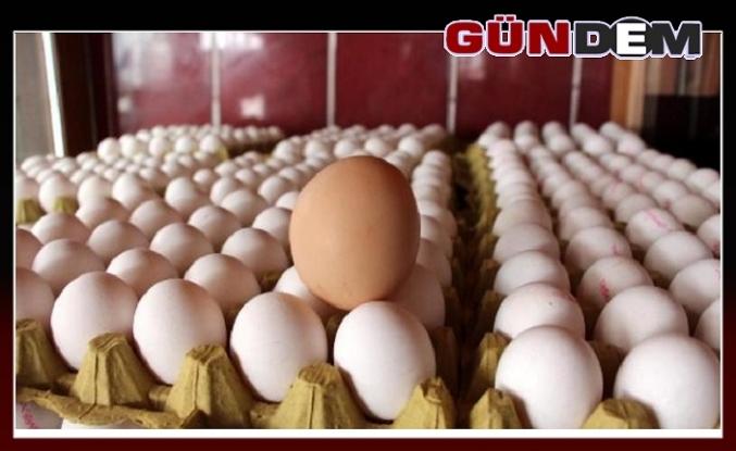 Yumurta yeniden zamlanabilir
