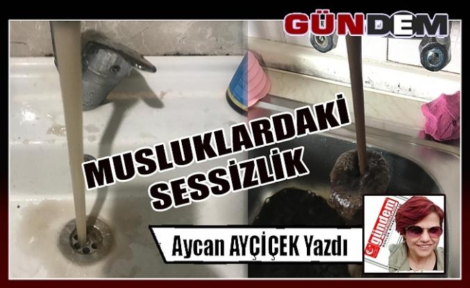 MUSLUKLARDAKİ SESSİZLİK