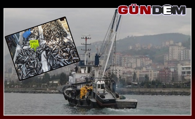 Balıkçılar tüm ümitlerini hamsiye bağladı