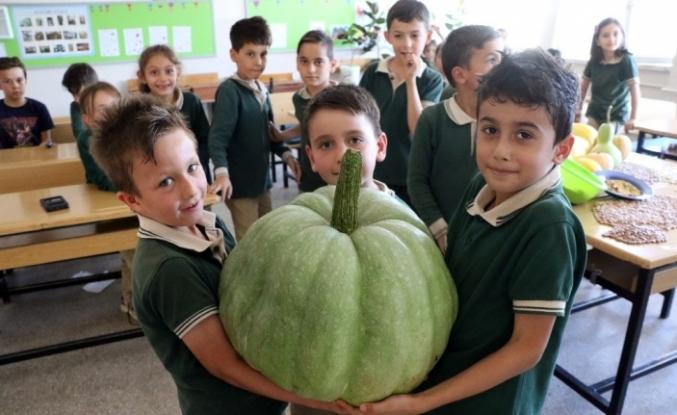 Öğrencilerden 42 kiloluk bal kabağı...