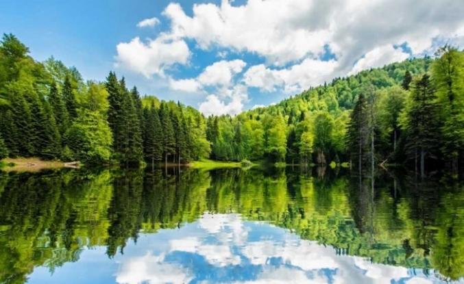 Torkul Yaylası muhteşem güzelliği ile havadan görüntülendi