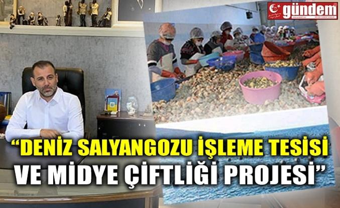 """""""DENİZ SALYANGOZU İŞLEME TESİSİ VE MİDYE ÇİFTLİĞİ PROJESİ"""""""