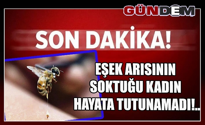Eşek arısının soktuğu kadın hayata tutunamadı!..
