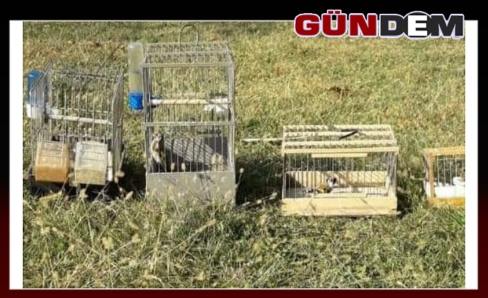 Saka kuşu avcılarına 12 bin lira ceza