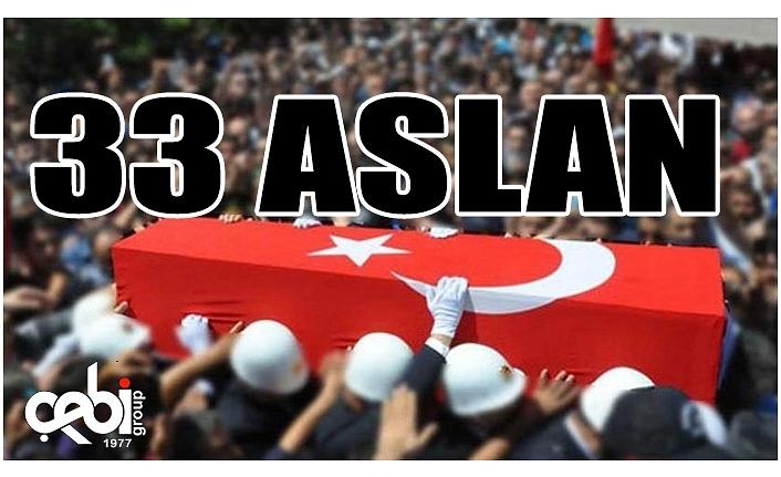 33 ASLAN...
